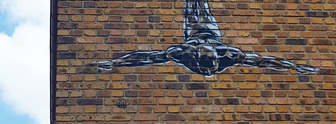 Le rêve d'Einstein – Street art de c215, Vitry-sur-Seine